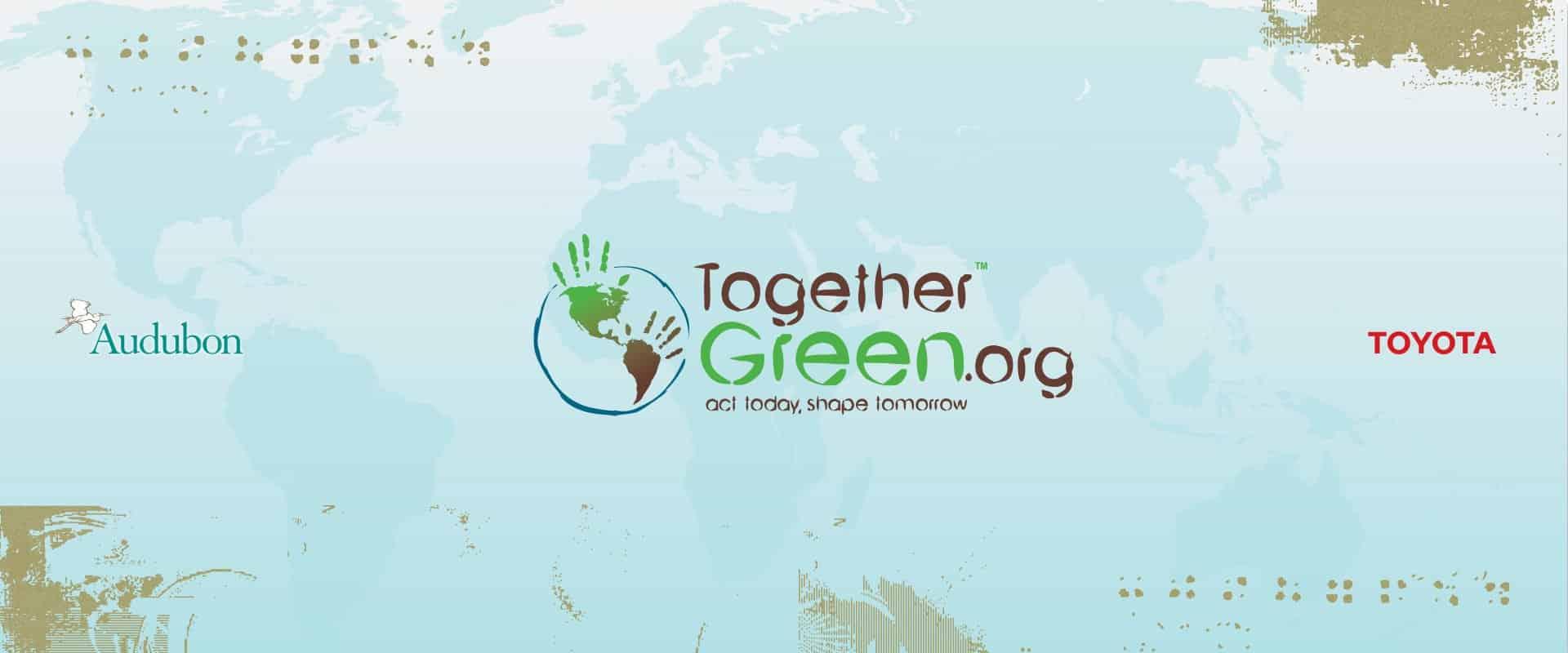 togethergreen web design